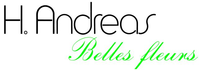 andreas-belles-fleurs-grun